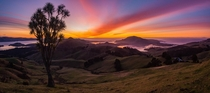 Winter Sunrise - Dunedin New Zealand