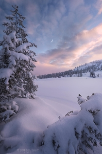Winter sunrises in Norway can be utterly amazing Kongsberg Viken
