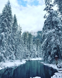 Winter Wonderland at Yosemite National Park