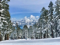 Winter Wonderland in Lake Tahoe CA  Taken atop Northstar Mountain