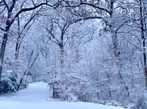 Winter wonderland in Wisconsin this morning
