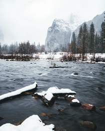 Winter Wonderland - Yosemite CA