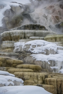 Wintry Mammoth Springs Yellowstone National Park  Ryan Kost x
