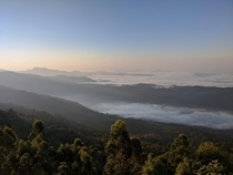 Woke up at  in the morning to catch the sun rise over this Sea of Clouds in Munnar India