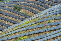 Workers check on solar panels in Chuzhou Anhui province China on April
