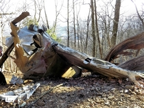 Wreckage of a B- Mitchell Bomber plane crashed in the Virginian mountains in