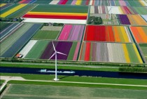 x-post from rpics- Tulip farm in Netherlands