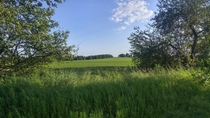 x-post rearthporn Farm fields on a summer day in Ontario