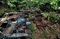 x This is the Chatillon Car Graveyard Its an abandoned strip of road filled with ruined cars and it goes on for miles