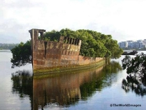 -Year-Old Abandoned Ship is now a Floating Forest