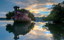 -Year-Old Abandoned Ship is now a Floating Forest loceted in Homebush Bay Sydney Australia x