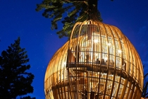 Yellow Treehouse Restaurant  Pacific Environments
