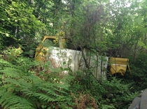Yellow truck left to the weeds