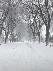 Yes its -C outside but winter makes the city look so calm and beautiful Manitoba Canada