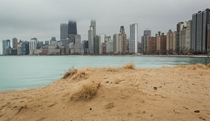 Yesterday at North Avenue Beach Chicago