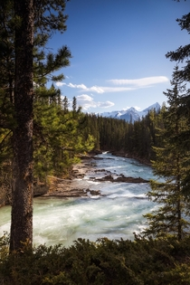 Yoho National Park needs some love because its views are just as amazing as Banffs