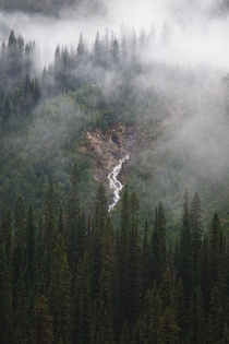 Yoho National Park Trees and Waterfalls