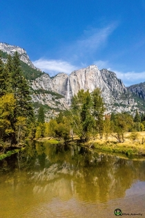 Yosemite Falls reflecting off the Merced River California