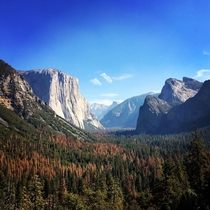Yosemite in the fall Aka the best photo ive ever taken