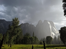 Yosemite is very pretty after a rainstorm  OC