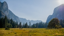Yosemite National Park California
