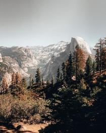 Yosemite Valley with fall vibes  x