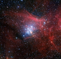 Young open star cluster NGC  located in the Southern Hemisphere constellation Carina