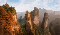 Zhangjiajie Indian Summer  OS