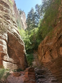 Zion Canyons Hidden Valley Trail
