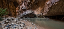 Zion Narrows day hike