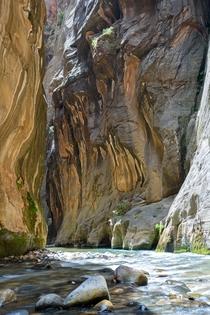 Zion Narrows Zion National Park Utah