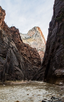Zion National Park Entrance to the Narrows Photo by Patrick Takkinen OC