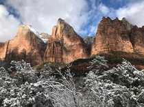 Zion National Park in the winter is underrated