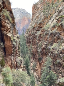 Zion National Park Not a professional at all but this place is gorgeous  x