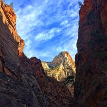 Zion National Park taken from the popular Narrows hike OCx