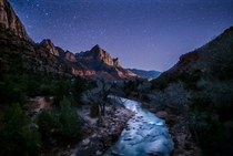 Zion Nights